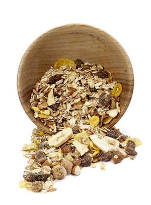 Cereal Processing - Muesli Dish - Cox & Plant