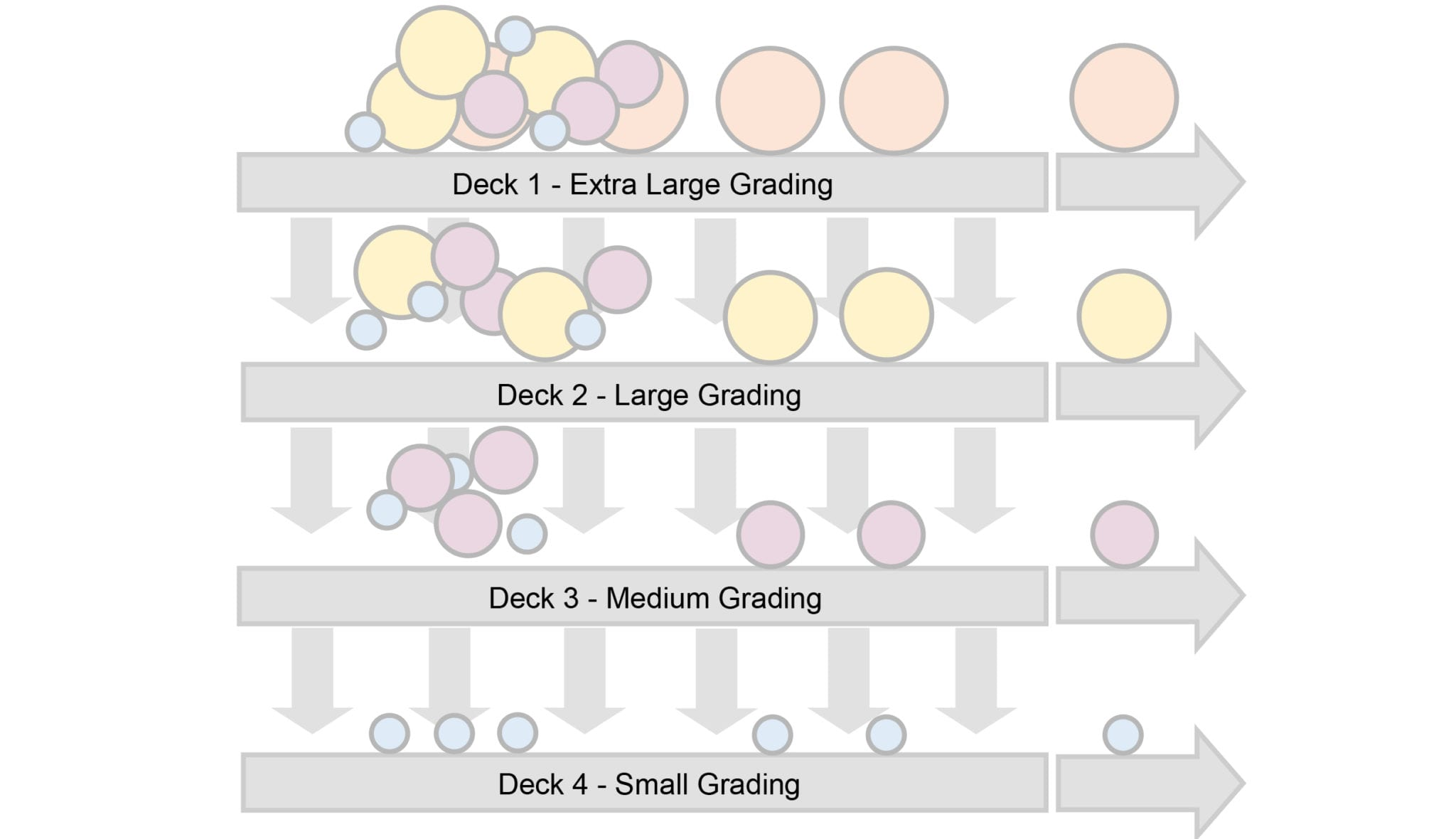 triple deck Grading-Conveyor-image